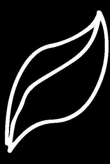 White--Leaf
